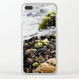 Windswept Shore Clear iPhone Case
