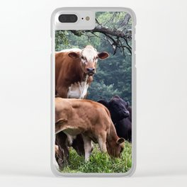 Cows Clear iPhone Case