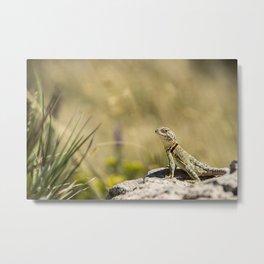 Lizard At Attention Metal Print