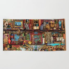 The Museum Shelf Beach Towel