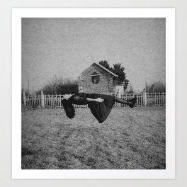 Levitation Art Print