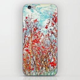 I Scratch the Sky iPhone Skin