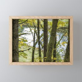 Canal Through the Trees Framed Mini Art Print