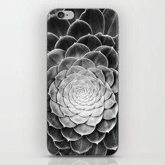 fibonacci iPhone & iPod Skin