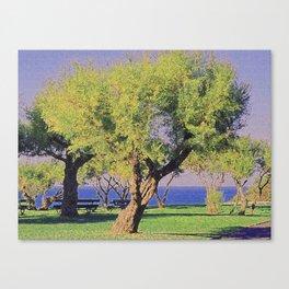 Tamarisk Trees Overlooking the Ocean Canvas Print