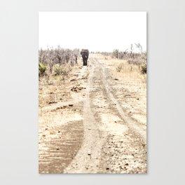 Elephant Walking Down Road Canvas Print