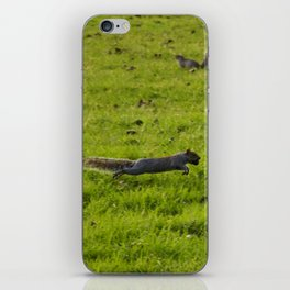 Bouncing squirrels iPhone Skin