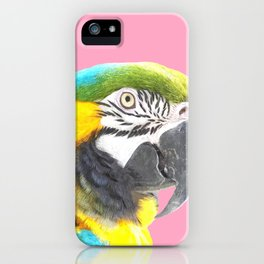 Macaw Portrait Pink Background iPhone Case