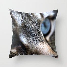 Katze, Cat Throw Pillow