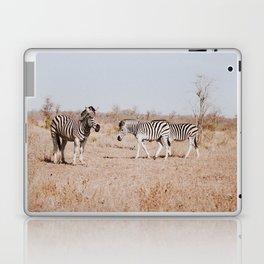 Hello Zebras Laptop & iPad Skin