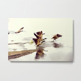 The Take Off - Wild Geese Metal Print