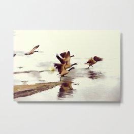 The Take Off - Wild Geese Metal Print