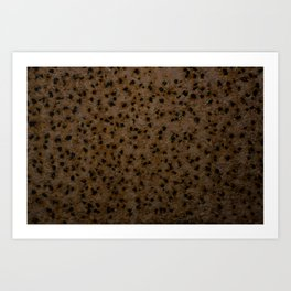 Rust Holes Art Print