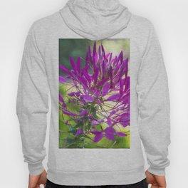 Floral Print 036 Hoody