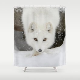 Fixated Shower Curtain