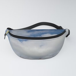 Painted Ladies Fanny Pack