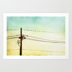 Yellow Mint Bird on Wire Photography, Turquoise Teal Birds on a Telephone Wire Art Print