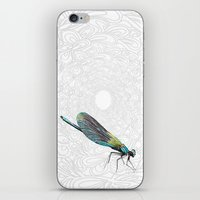 dragonfly iPhone & iPod Skins featuring Dragonfly by Matt McVeigh