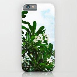 Hawaiian Blooms iPhone Case