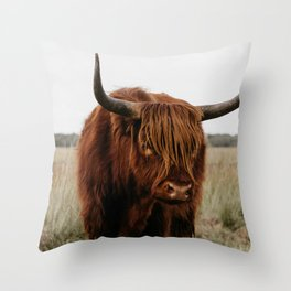 Highland Cow in nature | Wild Scottish Highlander, cattle in the Netherlands | Wild animals | Fine art travel and nature photography art print Throw Pillow