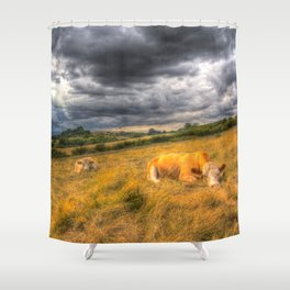 The Resting Cows Shower Curtain