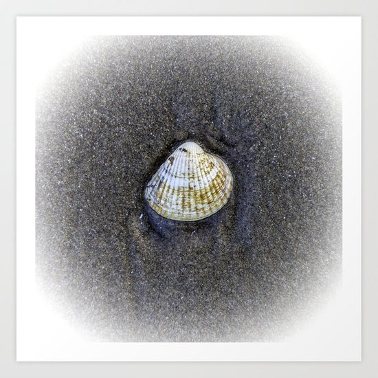Seashells & Sand 4 Art Print