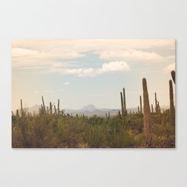 Down Desert Roads, II Canvas Print