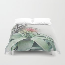 Air Plant Collection II Duvet Cover