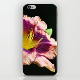 Peachy Keen Lily iPhone Skin