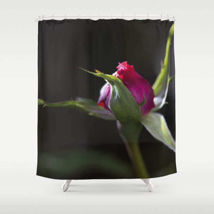 New Rose Shower Curtain