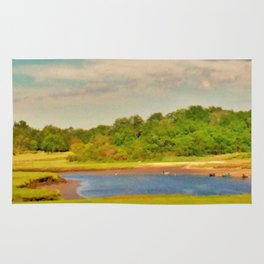 Picture Postcard Perfect Rug
