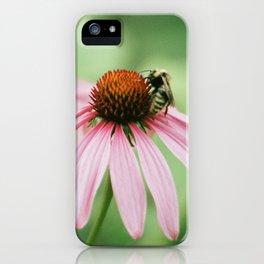 Summer memories iPhone Case