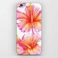 hibiscus iPhone & iPod Skins featuring Hibiscus by Sanjana Baijnath