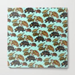 Turtle Skin Metal Print