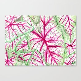 Heart leaves Canvas Print
