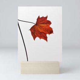 AUTUMN MAPLE LEAF ON WHITE Mini Art Print