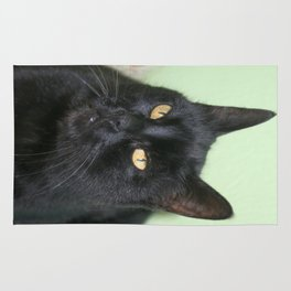 Relaxed Black Cat Portrait  Rug