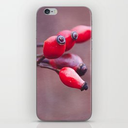 wild brier iPhone Skin