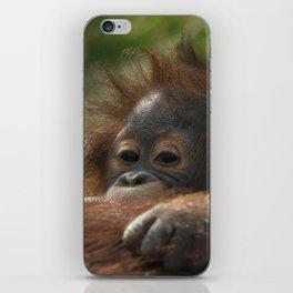 Baby Orangutan iPhone Skin