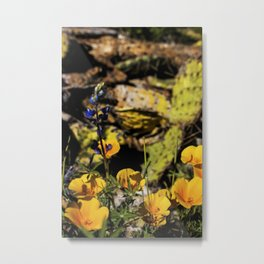 Colorful Desert Metal Print
