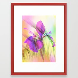 Iris and decor Framed Art Print