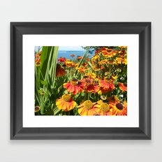 Sweet as a Bee and Daisies Framed Art Print