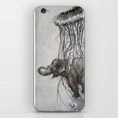 Chang iPhone & iPod Skin