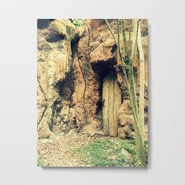 Grotto Door Metal Print