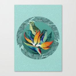 PARADISE BIRDS Canvas Print