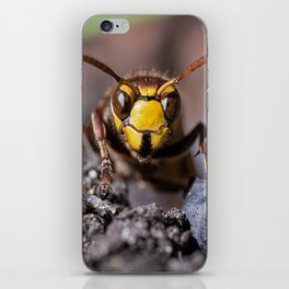 the hornet and you iPhone Skin