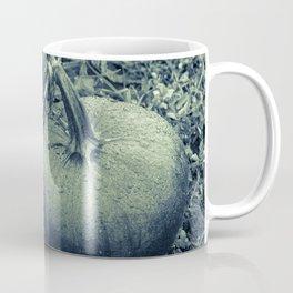 Green Pumpkin Coffee Mug