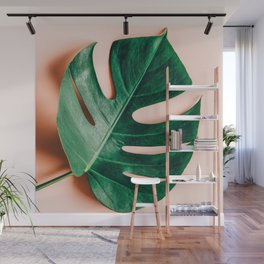 Monstera + Shadow Wall Mural