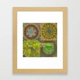 Twinged K-Naked Flower  ID:16165-123043-49351 Framed Art Print