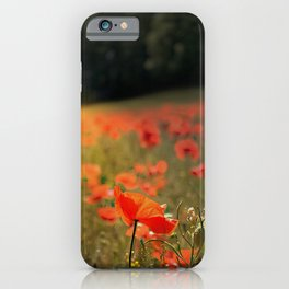 Catching The Last Rays  iPhone Case
